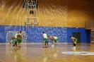 19/20 - 1B: KK Kočevje : KK Grosuplje